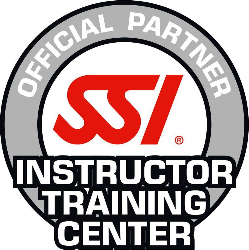 SSI_Logo_Inst_Tr_Center