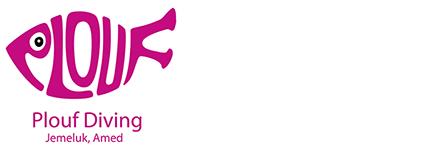 PloufDivingBali Logo