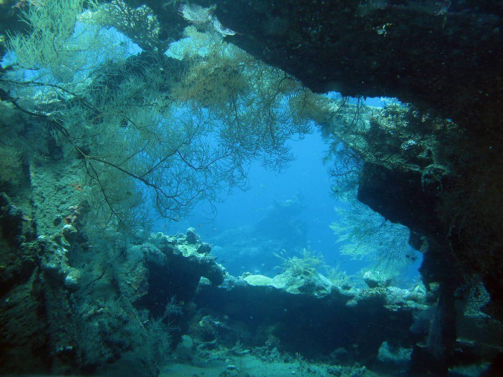 Diving USAT Liberty